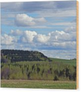 Field To Forest To Hill To Sky Wood Print