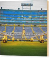 Field View Of Lambeau Wood Print