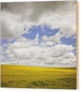 Field With Dramatic Sky. Wood Print