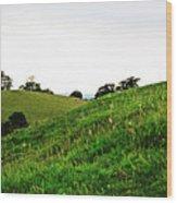 Fields In Glastonbury Wood Print