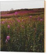 Fields In Pink Wood Print