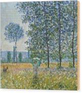 Fields In Spring, 1887 Wood Print