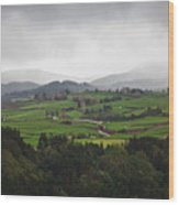 Fields In The Hill Wood Print