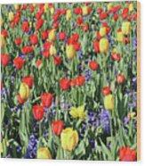 Fields Of Beauty 64 Wood Print