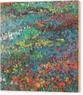 Fields Of Color Wood Print