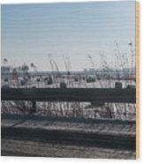Fields Of Snow Wood Print