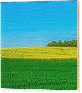 Fields Of Summer Wood Print