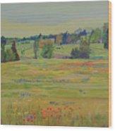 Fields Of Texas Wildflowers Wood Print