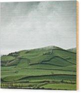 Fields Of The Hill Wood Print