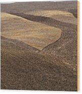 Fields Of Tuscany Wood Print