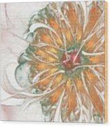 Fiery Chrysanthemum Wood Print