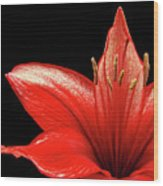 Fiery Red Wood Print