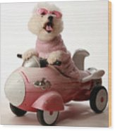 Fifi Is Ready For Take Off In Her Rocket Car Wood Print