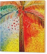 Fig Palm Sunset Wood Print