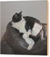Figaro The Cat Wood Print