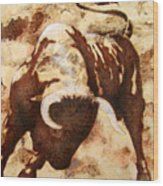 Fight Bull Wood Print