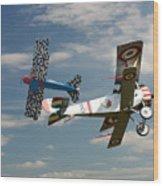 Fighting Colours 2 - Fokker D. Vll - Nieuport Wood Print