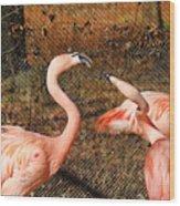Fighting Flamingos Wood Print
