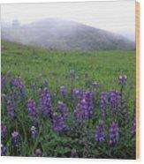 Figueroa Mountain With Fog Wood Print