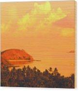 Fiji Mana Island Wood Print