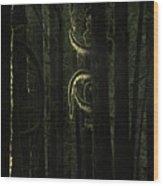 Final Light In Woods Wood Print