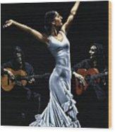 Finale del Funcionamiento del Flamenco Wood Print
