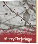 Finch Christmas Wood Print