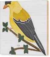 Finch In 2009 Wood Print