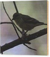 Finch Shadow 042814b Wood Print