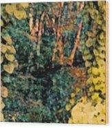 Finding Enchantment Wood Print