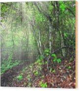 Finding Inspiration Wood Print