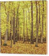 Fine Wine Cafe Golden Woods Wood Print