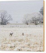 Fingal Winter Farmyard Wood Print