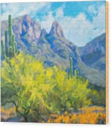 Finger Rock Tucson Az Wood Print