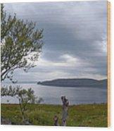 Finnmark Panorama Wood Print