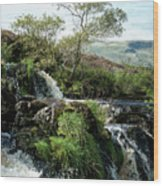 Fintry Loupe Wood Print