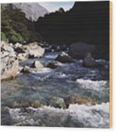 Fiordlands National Park Wood Print