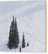Fir And Snow Wood Print