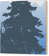 Fir At Dusk Wood Print