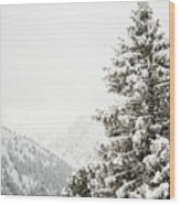 Fir Trees And Mountains Wood Print