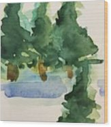 Fir Trees Wood Print