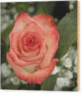Fire And Ice Rose Wood Print