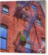 Fire Escape Wood Print