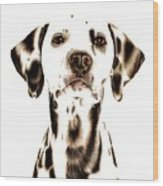 Fire Fighter's Best Friend Wood Print