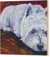 Fire Glow - West Highland White Terrier Wood Print by Lyn Cook