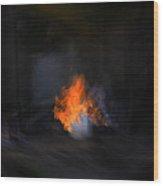 Fire In Desert Wood Print