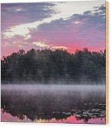 Fire Island Wood Print