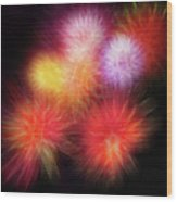 Fire Mums Floral - Fireworks Collage Wood Print