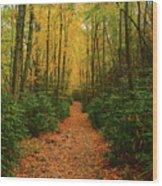 Fire Road Up Mount Minsi Wood Print