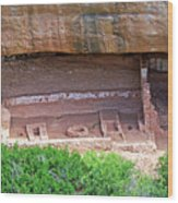 Fire Temple - Mesa Verde Nationalpark Wood Print